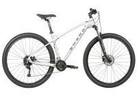 2020-haro-mtb-double-peak-29-trail-brushed-alloy.jpg